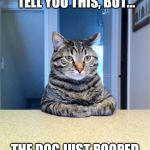 Uh... | I DON'T KNOW HOW TO TELL YOU THIS, BUT... THE DOG JUST POOPED IN YOUR BED. | image tagged in take a seat cat,dog poop,bed | made w/ Imgflip meme maker