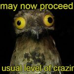 Weird Stuff I Do Potoo Meme | You may now proceed with your usual level of craziness. | image tagged in memes,weird stuff i do potoo | made w/ Imgflip meme maker