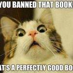 Scared Cat Meme | YOU BANNED THAT BOOK! THAT'S A PERFECTLY GOOD BOOK! | image tagged in banned,books,surprised | made w/ Imgflip meme maker