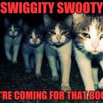 Wrong Neighboorhood Cats Meme | SWIGGITY SWOOTY WE'RE COMING FOR THAT BOOTY | image tagged in memes,wrong neighboorhood cats | made w/ Imgflip meme maker