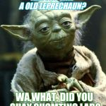 Star Wars Yoda Meme | ARE YOU LIKE A OLD LEPRECHAUN? WA,WHAT, DID YOU SHAY SHOMTING LAD? | image tagged in memes,star wars yoda | made w/ Imgflip meme maker