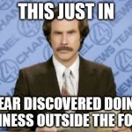 Ron Burgundy Meme | THIS JUST IN BEAR DISCOVERED DOING BUSINESS OUTSIDE THE FOREST | image tagged in memes,ron burgundy | made w/ Imgflip meme maker