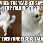 Persian Cat Room Guardian Meme | WHEN THE TEACHER SAYS STOP TALKING TO YOU BUT EVERYONE ELSE IS TALKING | image tagged in memes,persian cat room guardian | made w/ Imgflip meme maker