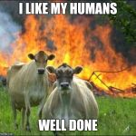 Evil Cows Meme | I LIKE MY HUMANS WELL DONE | image tagged in memes,evil cows | made w/ Imgflip meme maker