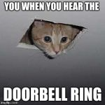 Ceiling Cat Meme | YOU WHEN YOU HEAR THE DOORBELL RING | image tagged in memes,ceiling cat | made w/ Imgflip meme maker