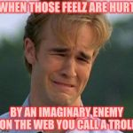 1990s First World Problems Meme | WHEN THOSE FEELZ ARE HURT BY AN IMAGINARY ENEMY ON THE WEB YOU CALL A TROLL | image tagged in memes,1990s first world problems | made w/ Imgflip meme maker