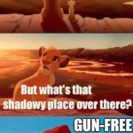 Simba Shadowy Place Meme | EVERYTHING THE LIGHT TOUCHES IS SECURED WITH FIREARMS. GUN-FREE  ZONES | image tagged in memes,simba shadowy place | made w/ Imgflip meme maker