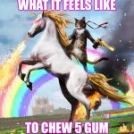 Welcome To The Internets Meme | WHAT IT FEELS LIKE TO CHEW 5 GUM | image tagged in memes,welcome to the internets | made w/ Imgflip meme maker