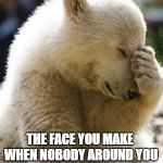 Facepalm Bear Meme | THE FACE YOU MAKE WHEN NOBODY AROUND YOU SEEMS TO KNOW ANYTHING | image tagged in memes,facepalm bear | made w/ Imgflip meme maker