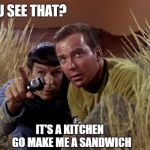 Spock and Kirk | YOU SEE THAT? IT'S A KITCHEN GO MAKE ME A SANDWICH | image tagged in spock and kirk | made w/ Imgflip meme maker