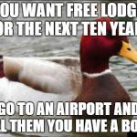 Malicious Advice Mallard Meme | IF YOU WANT FREE LODGING FOR THE NEXT TEN YEARS GO TO AN AIRPORT AND TELL THEM YOU HAVE A BOMB | image tagged in memes,malicious advice mallard | made w/ Imgflip meme maker