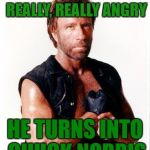 Chuck Norris Flex Meme | WHEN THE HULK GETS REALLY, REALLY ANGRY HE TURNS INTO CHUCK NORRIS | image tagged in memes,chuck norris flex,chuck norris | made w/ Imgflip meme maker