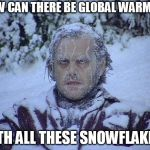 Jack Nicholson The Shining Snow Meme | HOW CAN THERE BE GLOBAL WARMING WITH ALL THESE SNOWFLAKES? | image tagged in memes,jack nicholson the shining snow | made w/ Imgflip meme maker