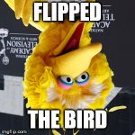 Use Your Img Nation | FLIPPED THE BIRD | image tagged in memes,big bird,flipped | made w/ Imgflip meme maker