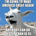 Laughing Goat Meme | I'M GOING TO MAKE AMERICA GREAT AGAIN ANYBODY CAN DO BETTER THAN IQ 45 | image tagged in memes,laughing goat | made w/ Imgflip meme maker