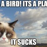 Grumpy Cat Sky Meme | ITS A BIRD! ITS A PLANE! IT SUCKS | image tagged in memes,grumpy cat sky,grumpy cat | made w/ Imgflip meme maker