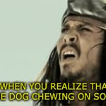 What is that sound? | WHEN YOU REALIZE THAT SOUND IS THE DOG CHEWING ON SOMETHING | image tagged in gifs,dog,dogs,chewing,run,jack sparrow | made w/ Imgflip video-to-gif maker
