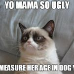 Grumpy Cat Bed Meme | YO MAMA SO UGLY THEY MEASURE HER AGE IN DOG YEARS | image tagged in memes,grumpy cat bed,grumpy cat | made w/ Imgflip meme maker