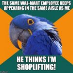 Salesperson: Can I help you, sir?   Paranoid Parrot: I'm going to pay for this birdseed, I swear!  | THE SAME WAL-MART EMPLOYEE KEEPS APPEARING IN THE SAME AISLE AS ME HE THINKS I'M SHOPLIFTING! | image tagged in memes,paranoid parrot,walmart,shoplifting,every shoppers worst fear,innocent | made w/ Imgflip meme maker
