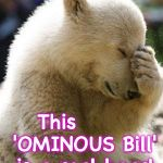 Rule of thumb: any time you hear the word 'Omnibus', and they're not talking about a vehicle..... it's usually a bad idea | Say it ain't so! This       'OMINOUS Bill' is a real bear! | image tagged in memes,facepalm bear | made w/ Imgflip meme maker