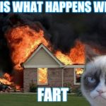 Burn Kitty Meme | THIS IS WHAT HAPPENS WHEN I FART | image tagged in memes,burn kitty,grumpy cat | made w/ Imgflip meme maker