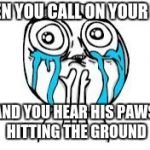 i would die for you | WHEN YOU CALL ON YOUR DOG AND YOU HEAR HIS PAWS HITTING THE GROUND | image tagged in memes,crying because of cute | made w/ Imgflip meme maker