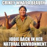 Steve Irwin Crocodile Hunter  | CRIKEY WHAT A BEAUTY JODIE BACK IN HER NATURAL ENIVRONMENT... | image tagged in steve irwin crocodile hunter | made w/ Imgflip meme maker