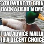 I heard we were bringing back dead memes | IF YOU WANT TO BRING BACK A DEAD MEME, ACTUAL ADVICE MALLARD IS A DECENT CHOICE | image tagged in memes,actual advice mallard,dead memes week,dead memes | made w/ Imgflip meme maker