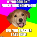 Advice Dog Meme | IF YOU COULDN'T FINISH YOUR HOMEWORK TELL YOU TEACHER I ATE THEM | image tagged in memes,advice dog | made w/ Imgflip meme maker