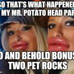 Duck Face Chicks Meme | SO THAT'S WHAT HAPPENED TO MY MR. POTATO HEAD PARTS LO AND BEHOLD BONUS; TWO PET ROCKS | image tagged in memes,duck face chicks | made w/ Imgflip meme maker