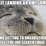 Satisfied Seal Meme | FINALLY LANDING AN AWESOME JOB AND GETTING TO UNSUBSCRIBE FROM ALL THE JOB SEARCH EMAIL SPAM | image tagged in memes,satisfied seal,AdviceAnimals | made w/ Imgflip meme maker