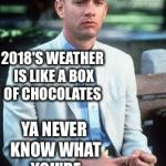 Forest gump | 2018'S WEATHER IS LIKE A BOX OF CHOCOLATES YA NEVER KNOW WHAT YOU'RE GONNA GET | image tagged in forest gump | made w/ Imgflip meme maker