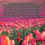 Pink Tulips | REGARDLESS OF WHY YOU CELEBRATE, WHETHER IT'S FAITH-BASED OR SIMPLY BECAUSE YOU LOVE PEEPS, I THINK WE CAN ALL AGREE THAT EASTER IS A PRETTY | image tagged in pink tulips | made w/ Imgflip meme maker