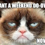 Grumpy Cat Not Amused Meme | I WANT A WEEKEND DO-OVER! NOW! | image tagged in memes,grumpy cat not amused,grumpy cat | made w/ Imgflip meme maker