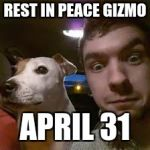 Jacksepticeye's Gizmo Beloved Dog and Best Friend | REST IN PEACE GIZMO APRIL 31 | image tagged in jacksepticeye,rip,rest in peace | made w/ Imgflip meme maker