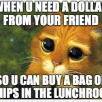 Shrek Cat Meme | WHEN U NEED A DOLLAR FROM YOUR FRIEND SO U CAN BUY A BAG OF CHIPS IN THE LUNCHROOM | image tagged in memes,shrek cat | made w/ Imgflip meme maker