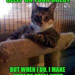 The Most Interesting Cat In The World Meme | I DON'T ALWAYS SLEEP ON YOUR CHEST BUT WHEN I DO, I MAKE SURE TO STEAL YOUR BREATH, KILLING YOU SLOWLY | image tagged in memes,the most interesting cat in the world,steal,breath,sleep,chest | made w/ Imgflip meme maker