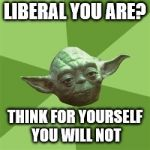 Advice Yoda Meme | LIBERAL YOU ARE? THINK FOR YOURSELF YOU WILL NOT | image tagged in memes,advice yoda | made w/ Imgflip meme maker