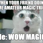 OMG Cat Meme | WHEN YOUR FRIEND DOING SOME AMATEUR MAGIC TRICKS Me: WOW MAGIC | image tagged in memes,omg cat | made w/ Imgflip meme maker