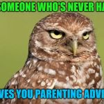 DoctorDoomsday180's new template! | WHEN SOMEONE WHO'S NEVER HAD KIDS GIVES YOU PARENTING ADVICE | image tagged in death stare owl,kids,parenting,advice | made w/ Imgflip meme maker