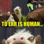 Bad pun cow  | TO ERR IS HUMAN... TO FORGIVE, THAT'S BOVINE <— EXCUSE ME... I HAVE SOMETHING TO SAY... | image tagged in bad pun cow,memes,raycat on the farm,click clack moo | made w/ Imgflip meme maker