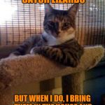 The Most Interesting Cat In The World Meme | I DON'T ALWAYS CATCH LIZARDS BUT WHEN I DO, I BRING THEM IN THE HOUSE AND MEOW REPEATEDLY IN VICTORY | image tagged in memes,the most interesting cat in the world,lizard,meow | made w/ Imgflip meme maker