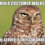 Death Stare Owl | WHEN A CUSTOMER WALKS IN AND ASKS THE SERVER IF THEY CAN ORDER FOOD HERE | image tagged in death stare owl | made w/ Imgflip meme maker