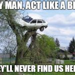 Secure Parking Meme | HEY MAN, ACT LIKE A BIRD THEY'LL NEVER FIND US HERE ! | image tagged in memes,secure parking | made w/ Imgflip meme maker