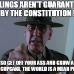 Sergeant Hartmann Meme | FEELINGS AREN'T GUARANTEED BY THE CONSTITUTION ! SO GET OFF YOUR ASS AND GROW A SET CUPCAKE, THE WORLD IS A MEAN PLACE | image tagged in memes,sergeant hartmann | made w/ Imgflip meme maker