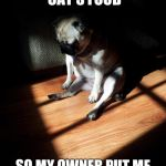 shame on the doggo | I ATE ALL THE CAT'S FOOD SO MY OWNER PUT ME IN THE CORNER OF SHAME | image tagged in depressed pug,corner of shame | made w/ Imgflip meme maker