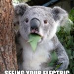 Koala Mol - ala | SEEING YOUR ELECTRIC BILL BE LIKE | image tagged in memes,surprised koala,why | made w/ Imgflip meme maker