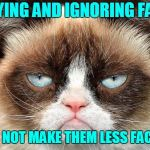 Grumpy Cat Not Amused Meme | DENYING AND IGNORING FACTS DOES NOT MAKE THEM LESS FACTUAL | image tagged in facts,alternative facts,fact check,deny fact,donald trump | made w/ Imgflip meme maker