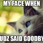 First World Problems Cat Meme | MY FACE WHEN SUDZ SAID GOODBYE | image tagged in memes,first world problems cat | made w/ Imgflip meme maker