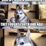 Bad Pun Dog Meme | MY DAD WAS DENTIST AND MY MOM A MANICURIST. THEY FOUGHT TOOTH AND NAIL... | image tagged in memes,bad pun dog | made w/ Imgflip meme maker